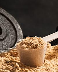 Chocolate Protein Shakes